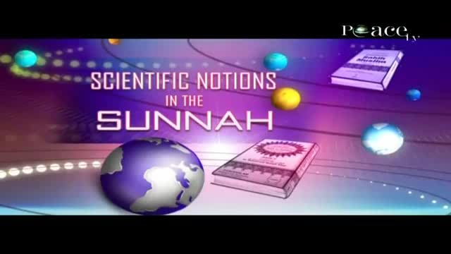The Scientific Notions in Sunnah - Dr.Zaghloul An Najjar- Islam and Science.Part 2.